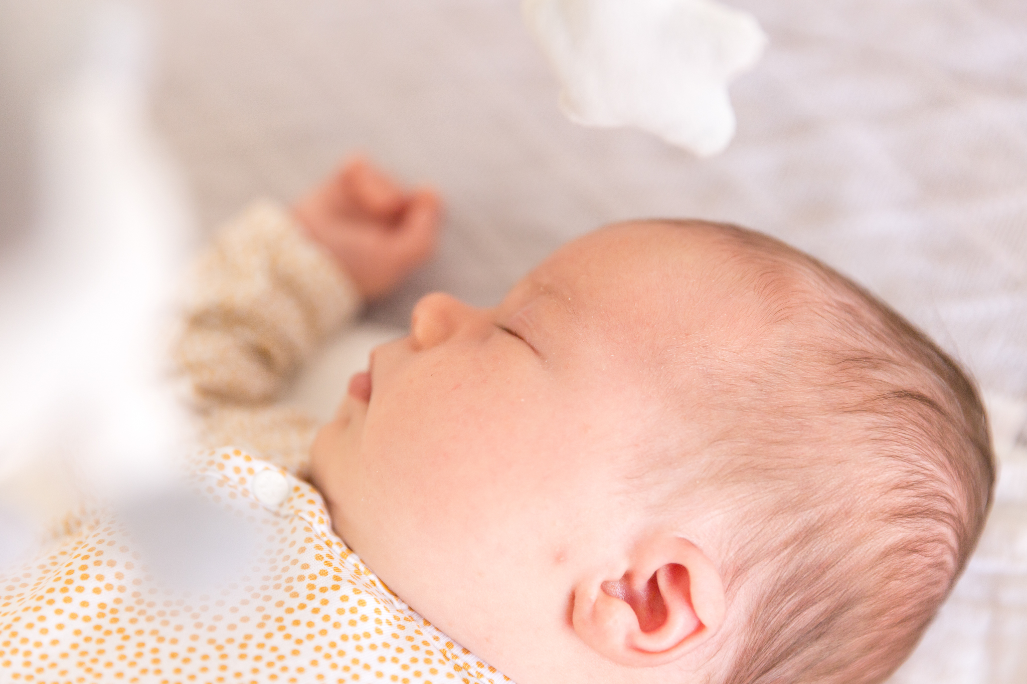 Newborn shoot brabant