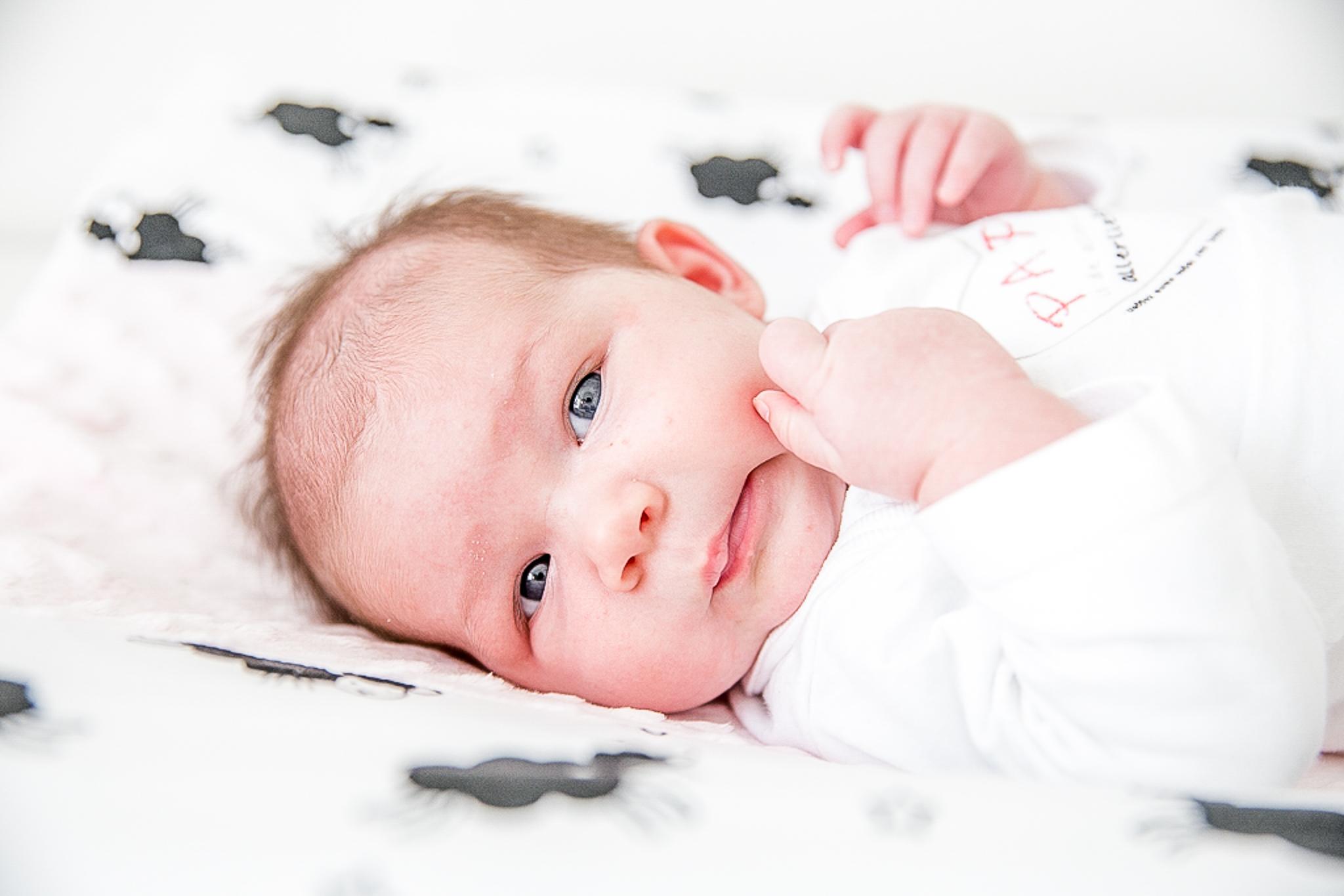 Newborn shoot breda