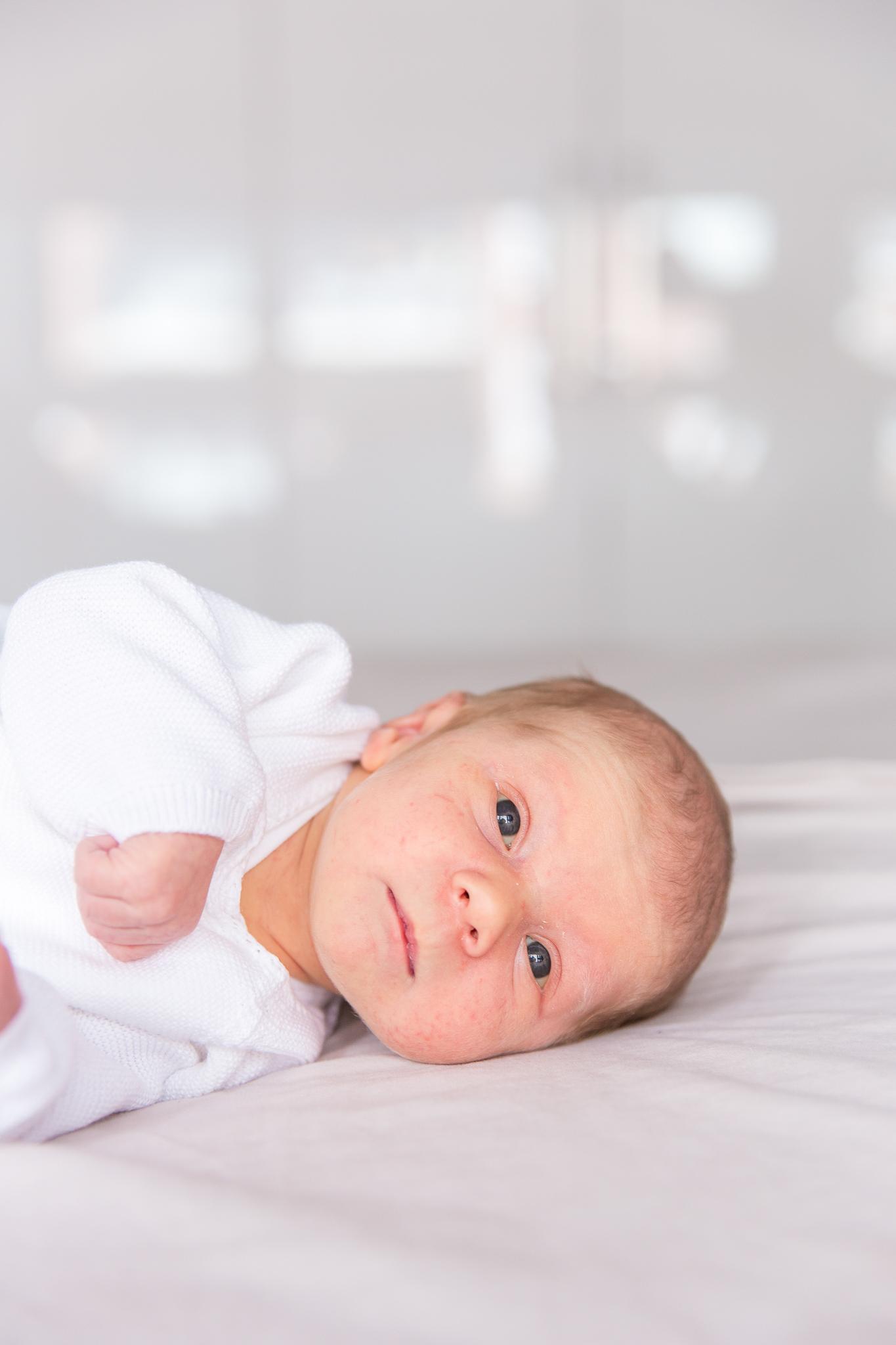 Newborn shoot tilburg